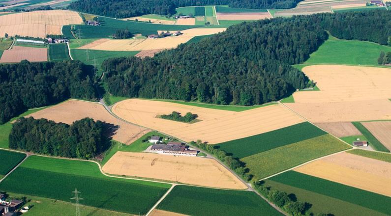 Как узнать кадастровую стоимость земли по кадастровому номеру, онлайн или по адресу