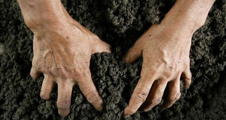 нецелевое использование земельного участка ответственность